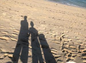 林志颖带kimi海滩捡垃圾做环保 父子背影尽显温馨